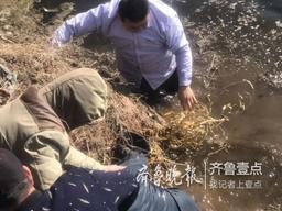 老人癫痫病发掉入6米深塘,230斤胖医生跳水救人