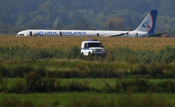 """普京下令授予在玉米地迫降的俄客机飞行员""""俄罗斯英雄""""称号"""
