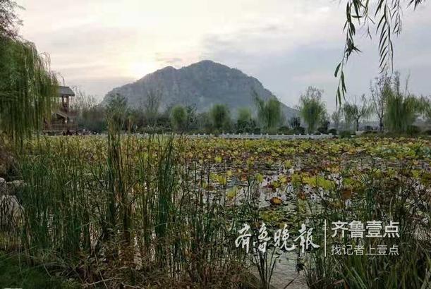 戚勇 10月14日摄于济南