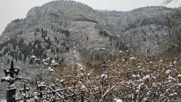 果然视频|雪后济南南山,景色分外妖娆