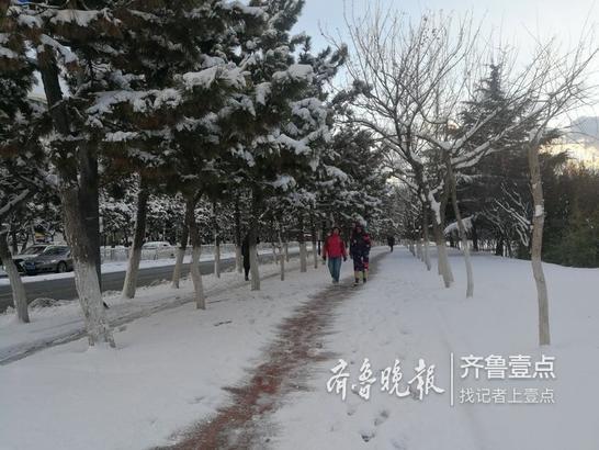 """7日是大雪节气,在烟台芝罘区,一觉醒来,楼外已经被大雪覆盖,市民正抓紧清理路面和车顶的积雪,烟台又有了""""雪窝""""的模样。(齐鲁晚报 齐鲁壹点 记者 赵金阳)编辑 刘丹"""
