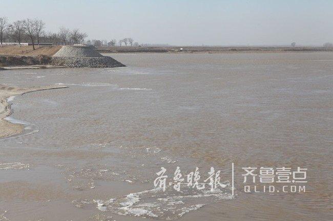 山东黄河今冬首次淌凌,本年度日期较常年偏晚22天