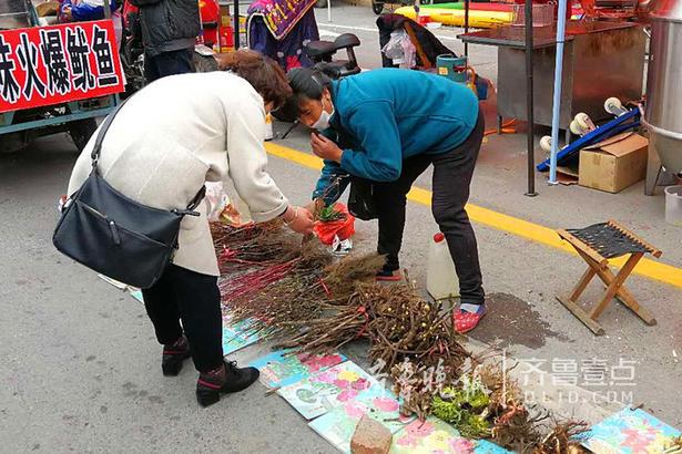据《峄县志》记载,青檀庙会的历史由来距今已有400余年的历史,于每年的清明节所举办,每年都会吸引一些游客来参观游赏。