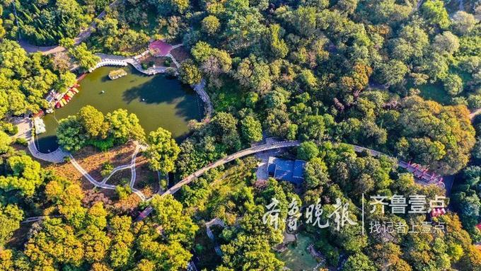 宋广兴 10月11日摄于济南 编辑:王媛