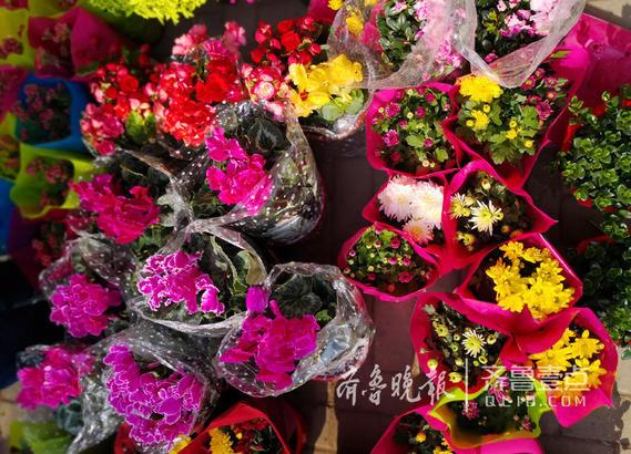 色泽鲜艳的花卉。