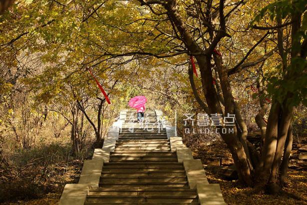 """""""中国石榴之乡""""枣庄市峄城18万亩石榴园像一颗随节令变幻着色彩的璀璨明珠,镶嵌在山水之间,山坡上各种树叶与榴林交相辉映,层林尽染,美景如画。"""