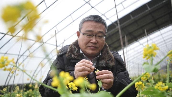 新春走基层:春节蔬菜专家坚守大棚育苗授粉