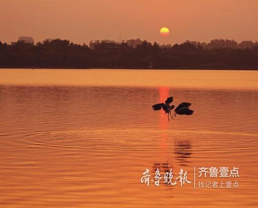 钟福生 10月11日摄于济南