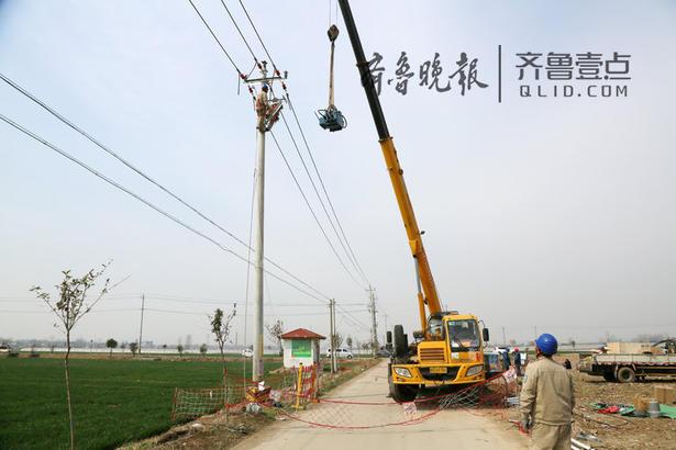 近日,在枣庄滕州市姜屯镇白庄村乡间路上,枣庄供电公司滕州客户服务分中心组织30余名施工人员,升级改造10千伏白庄线。