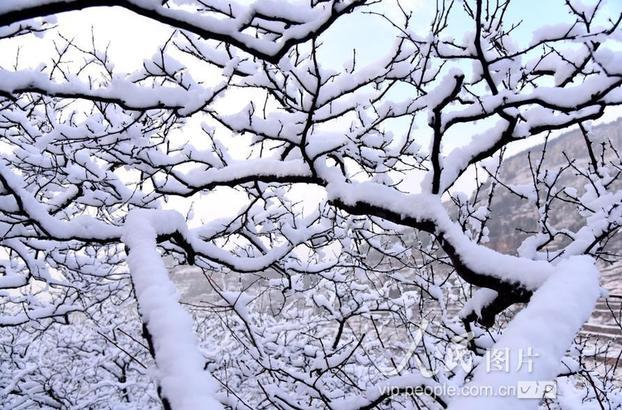 自12月5日下午起,枣庄市山亭区迎来入冬以来的首场降雪天气。雪后的乡村田野到处是银装素裹,美景如画。据气象专家介绍,此次降雪对于净化空气、小麦越冬等非常有利。 (刘明祥/人民图片)