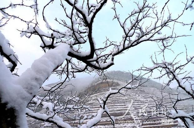 12月6日,这是枣庄市山亭区水泉镇朱山流域美丽雪景。