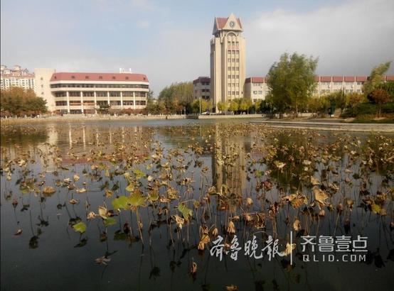 秋风吹黄了夏日绿茵,吹来了秋日寒凉,片片落叶,任诗情飘摇翻飞。