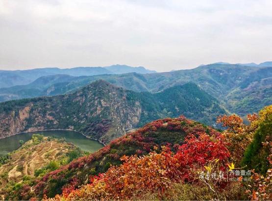 秋日的红山翠谷,红叶如期而至,由向阳的山坡开始,错落有序地由黄及橙、由橙及褐、由褐及红……即使一株树,不同的树梢也有不一样的秋色。