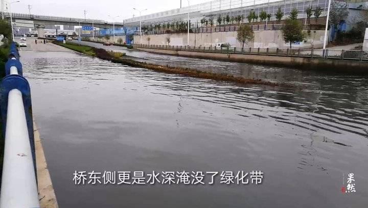 果然视频 一场大雨过后,济南一桥下马路变河道