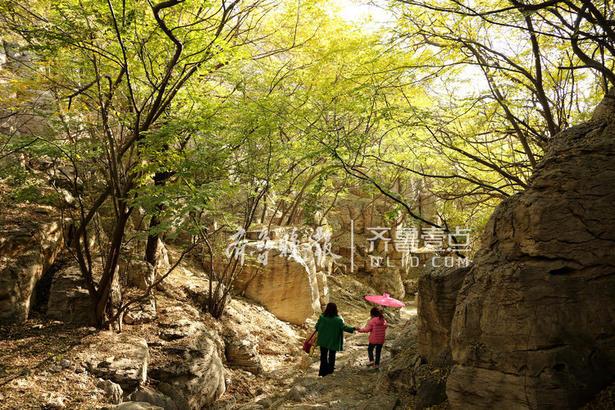 游人在枣庄市峄城石榴园游玩。