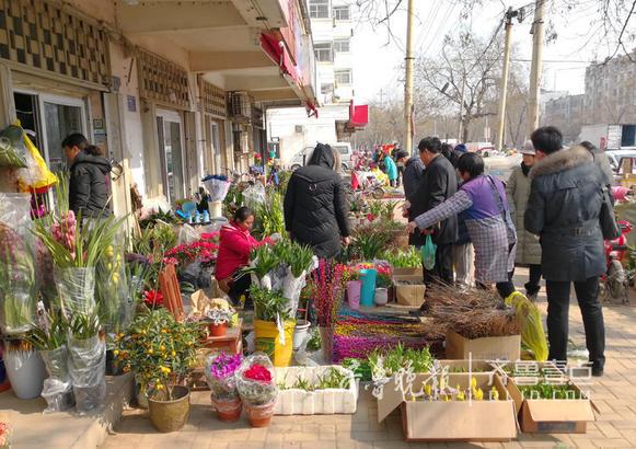 市民在选购花卉。